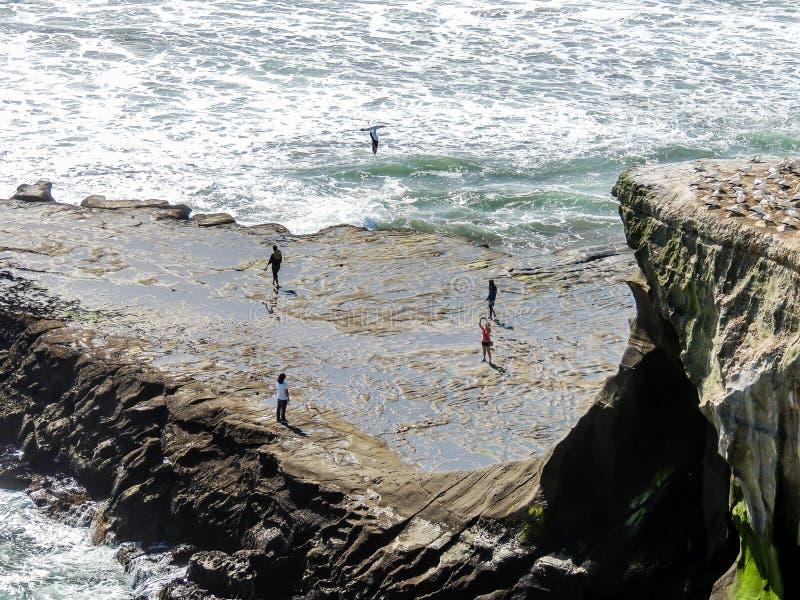 Turisti che fanno roba da turisti mentre in giro in Nuova Zelanda fotografie stock