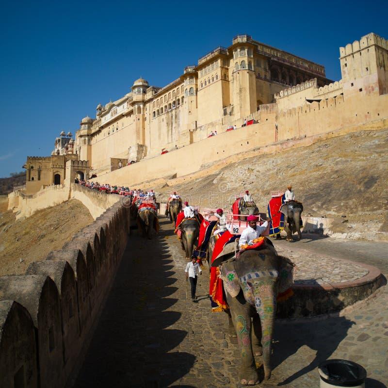 Turisti che guidano elefante alla fortificazione ambrata immagine stock