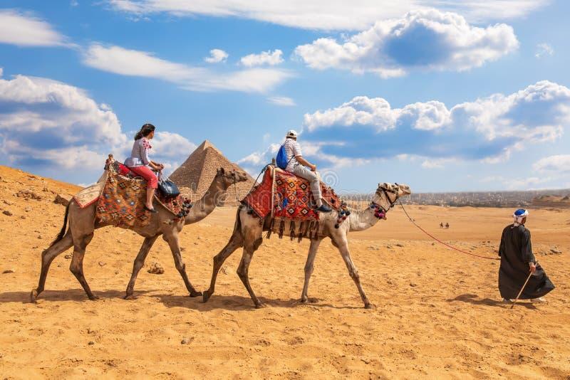 Turisti che guidano i cammelli vicino alle piramidi di Giza immagini stock libere da diritti