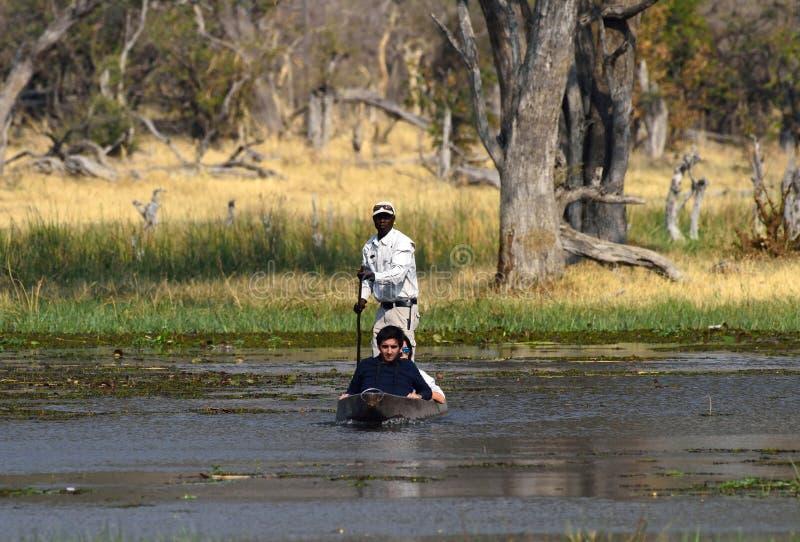 Turisti su una canoa di mokoro nel Botswana immagine stock
