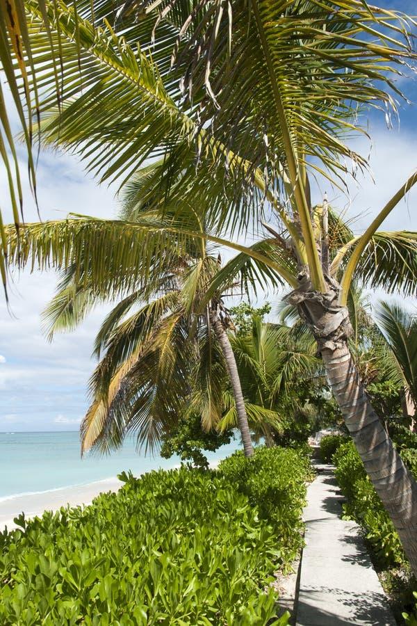 Turk Town Beach grande foto de stock royalty free