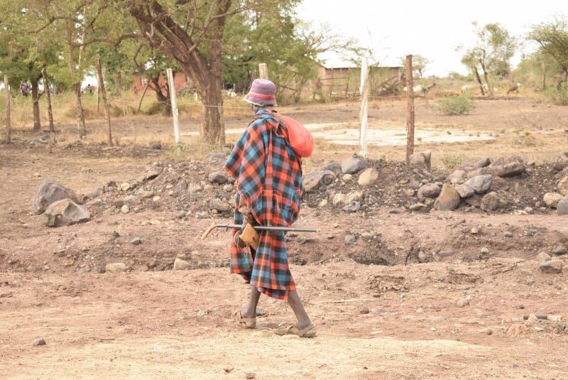 Turkana man arkivbilder