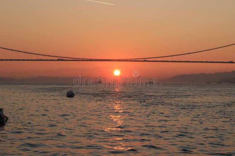 Turkay伊斯坦布尔博斯普鲁斯海峡鸟日落 免版税库存图片