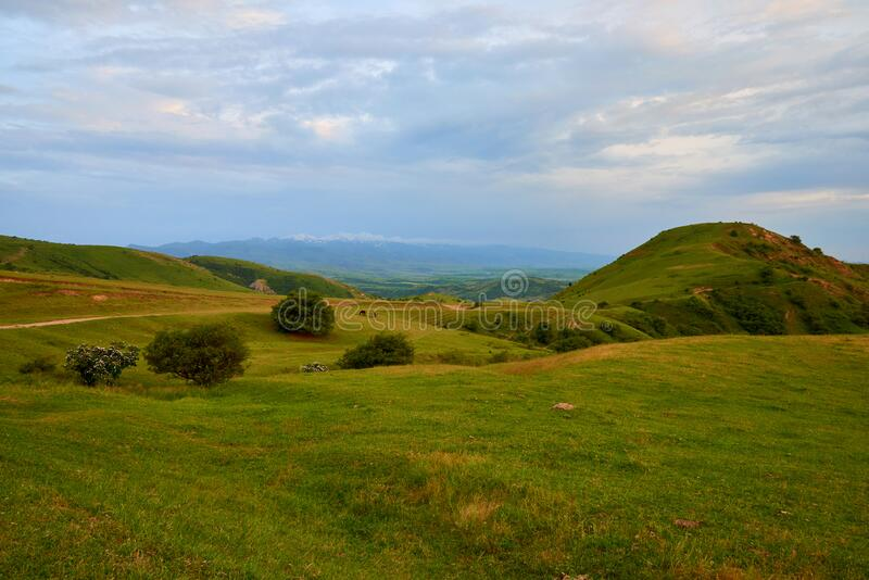 Mountain valley with green trees in Turkestan region, Kazakhstan, Central Asia. royalty free stock photo