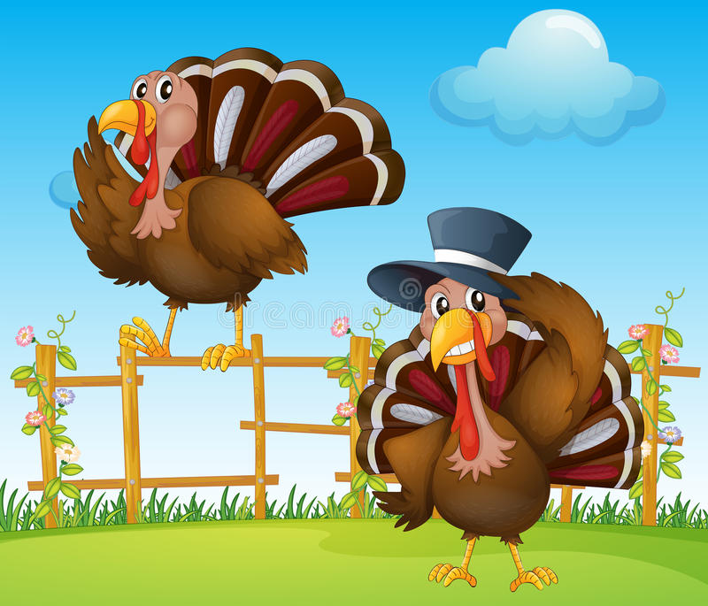 A turkey above the wooden fence and a turkey wearing a hat. Illustration of a turkey above the wooden fence and a turkey wearing a hat