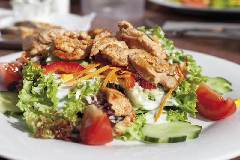 Turkey breast strips with mixed salad and joghurt, close up royalty free stock photos
