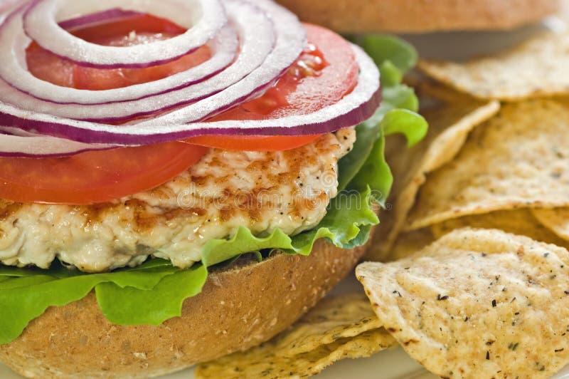 Download Turkey Burger Stock Photo - Image: 13795410