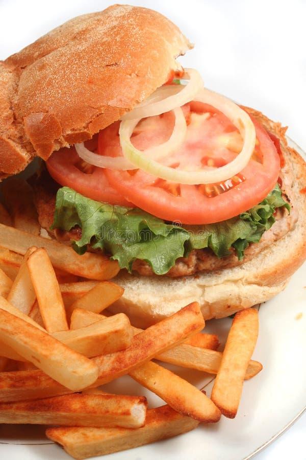 Turkey burger stock photography