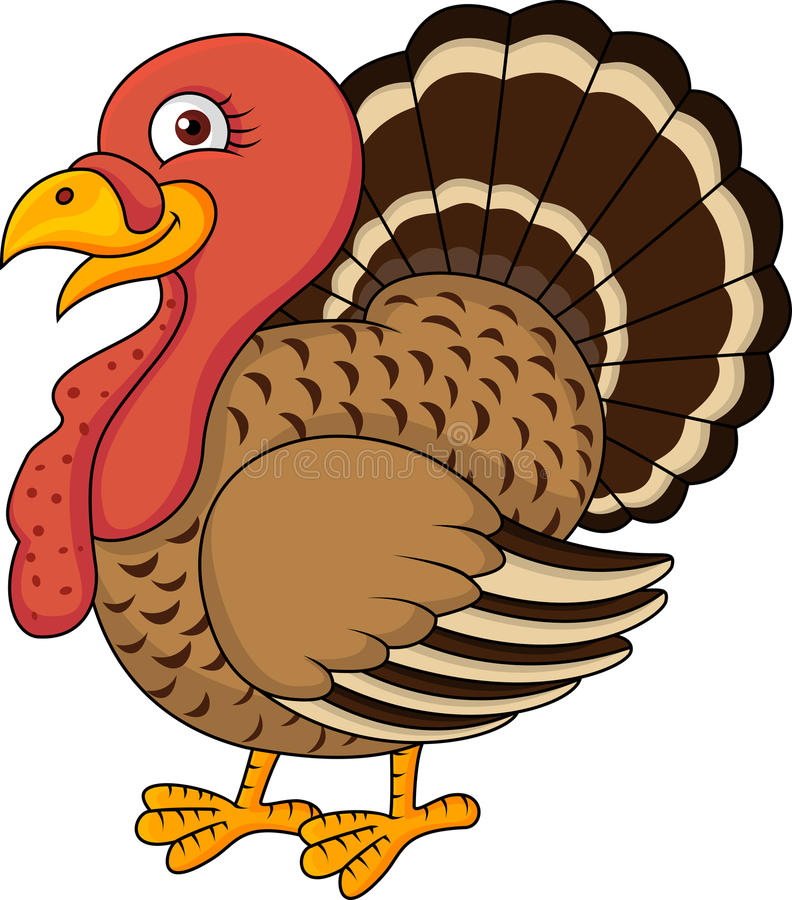 Turkey cartoon stock vector illustration of animal
