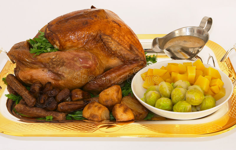 Download Turkey dinner 1 stock image. Image of christian, poultry - 188393