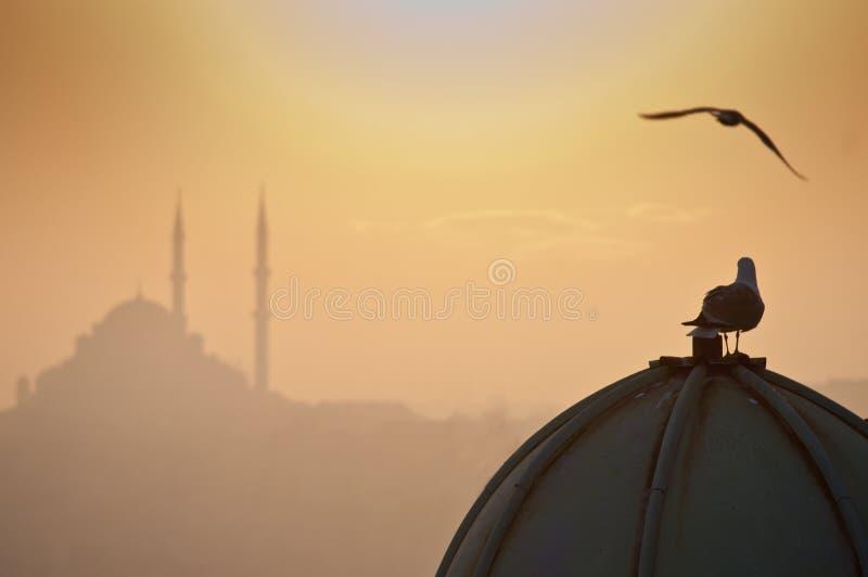 Download Turkey stock photo. Image of koran, empire, mosque, protection - 39501630