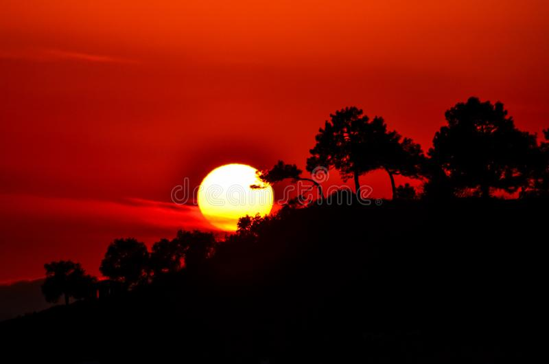 Turkey izmir beautiful sunset behind the trees stock images