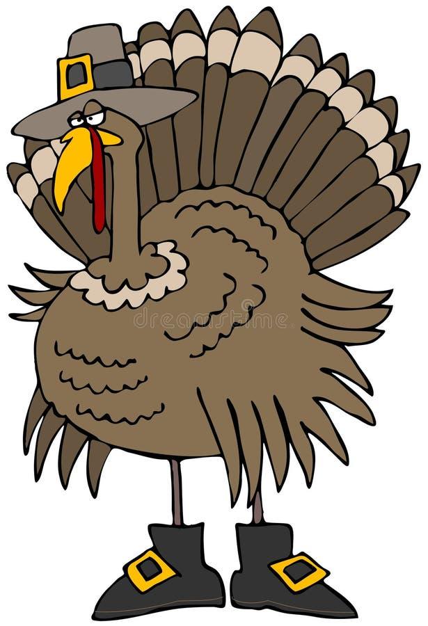 Turkey Pilgrim vector illustration