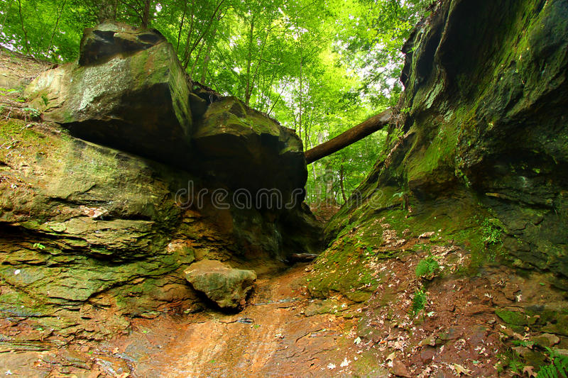Turkey Run State Park Landscape. Falls Canyon is located in the woodlands of Turkey Run State Park in Indiana royalty free stock photography