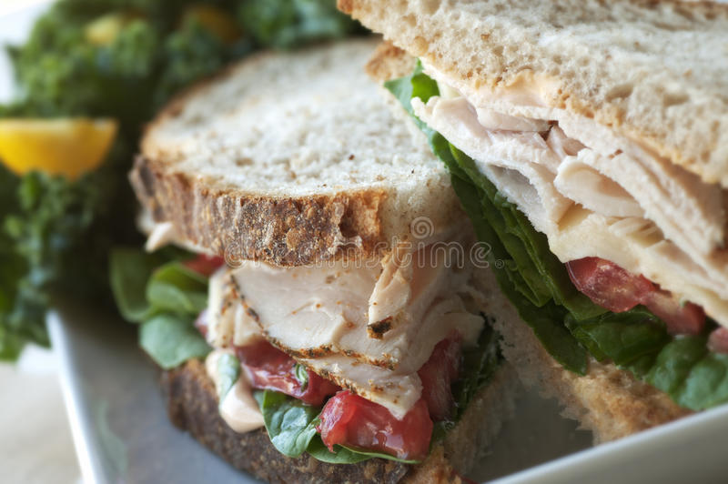 Download Turkey Sandwich stock image. Image of gourmet, meal, closeup - 26176975