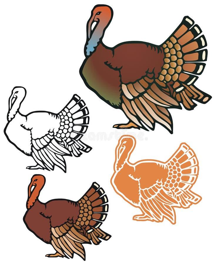 Download Turkey stock vector. Image of tailfeathers, illustration - 33534248
