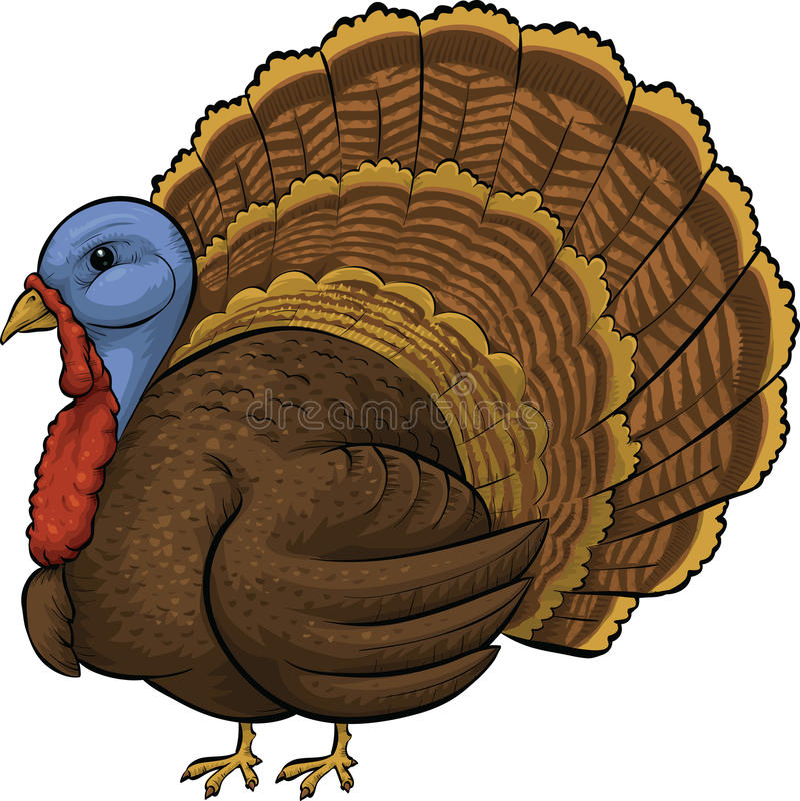Turkiet fågel stock illustrationer
