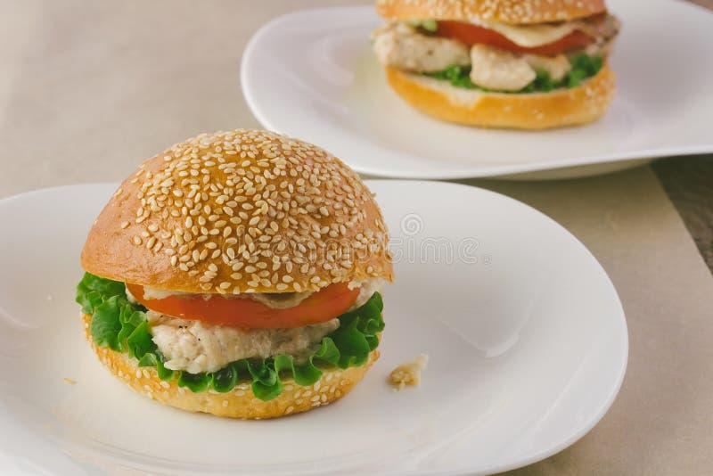 Turkiet hamburgare på porslinmaträtt royaltyfri bild