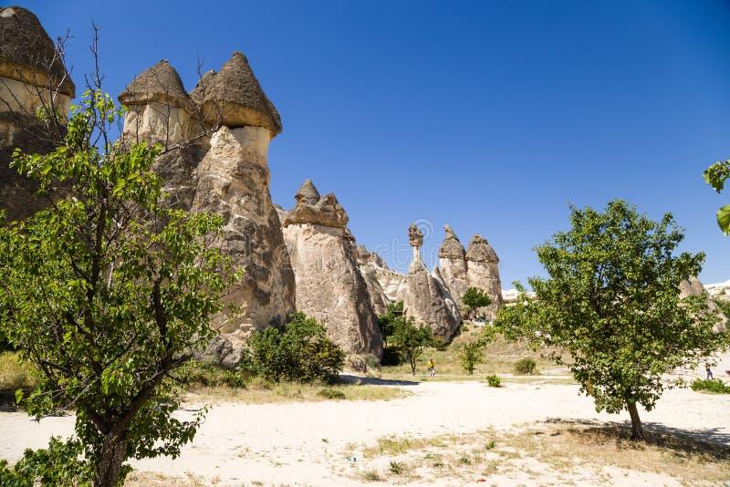 Turkije, Cappadocia Steenpaddestoelen in de Vallei van de Monniken (Pashabag) royalty-vrije stock afbeeldingen