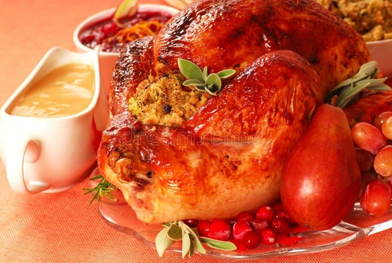 Turkije met het vullen, jus en Amerikaanse veenbessaus stock afbeelding