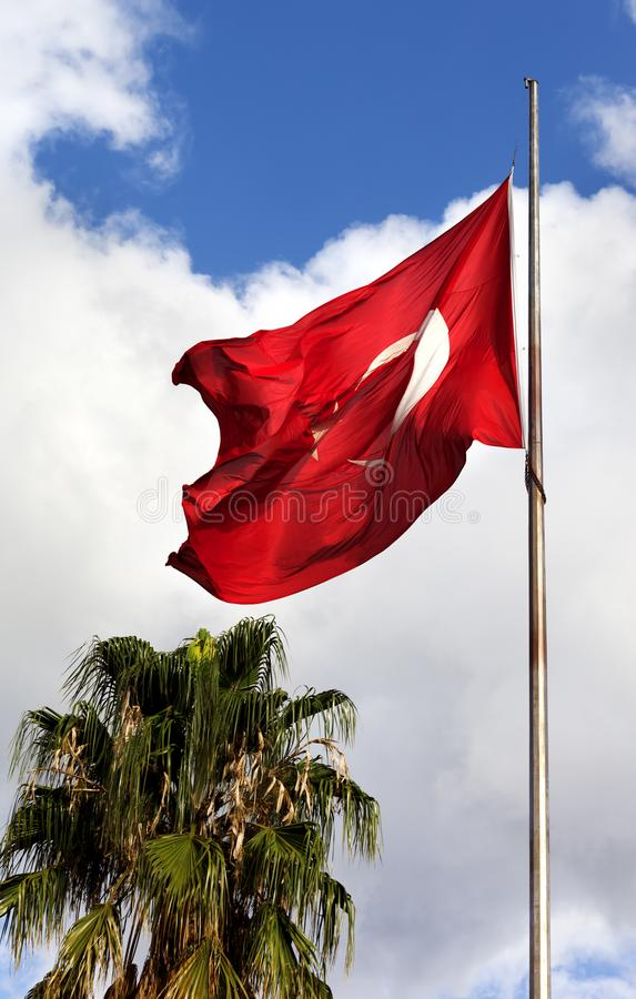 Turkish flag waving in wind, palm tree and blue sky with clouds royalty free stock image