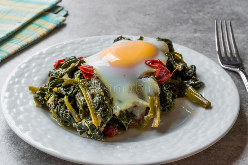 Turkish Food Spinach with Egg stock photo