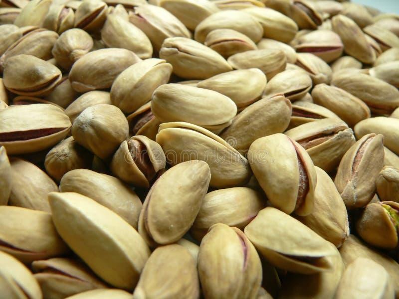 Turkish pistachio nut royalty free stock photo