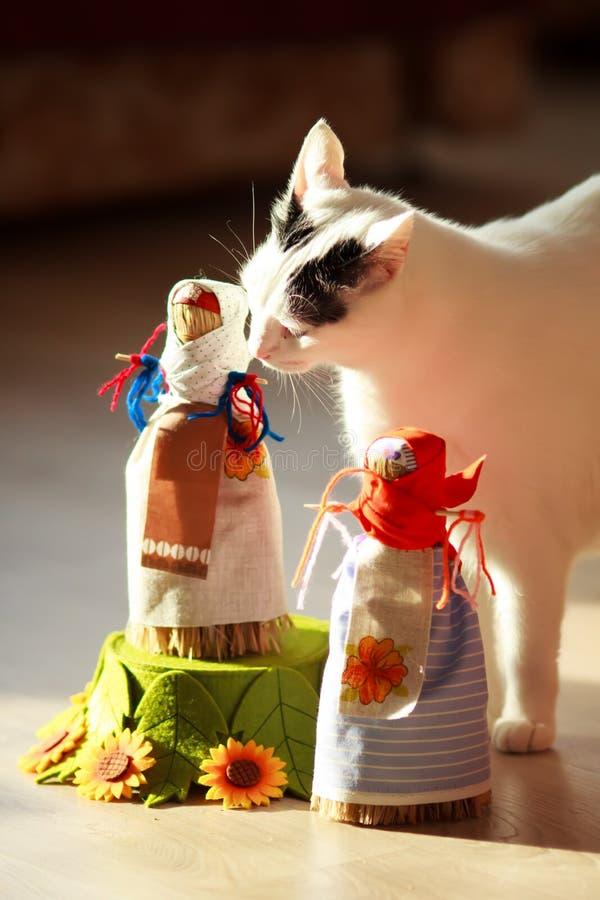 Turkish Van Cat stock photo