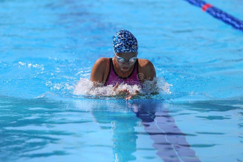 Turkisk simningmästerskap royaltyfri bild