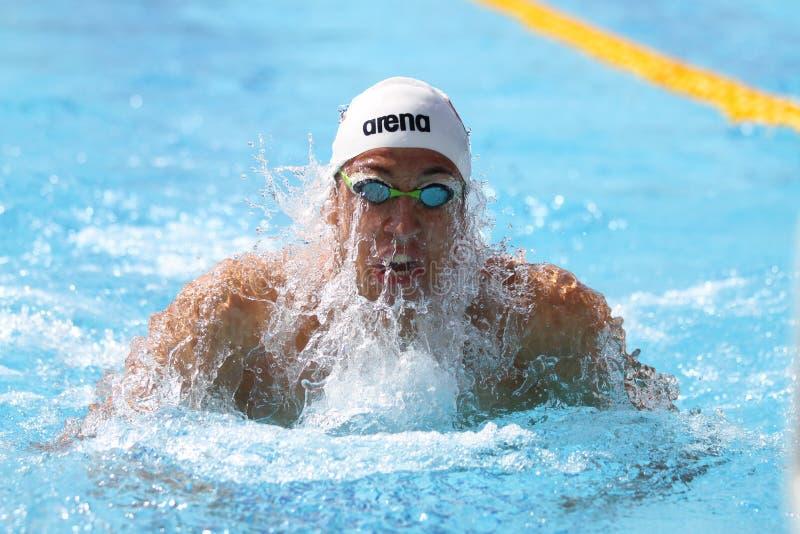 Turkisk simningmästerskap royaltyfri foto