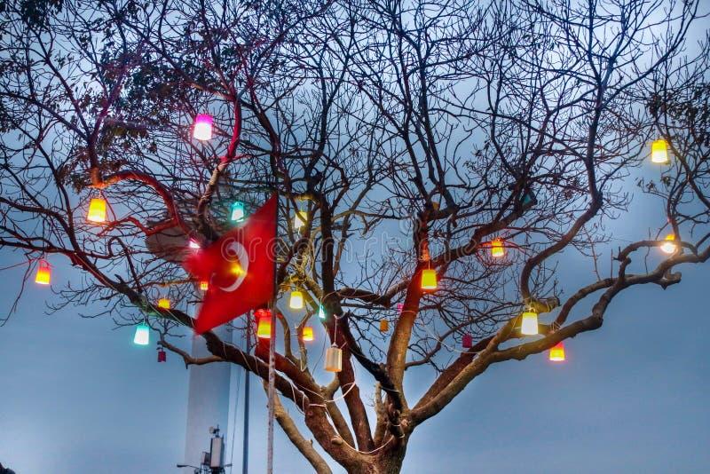Turkiska flagga- & trädljus Uskudar Istanbul fotografering för bildbyråer