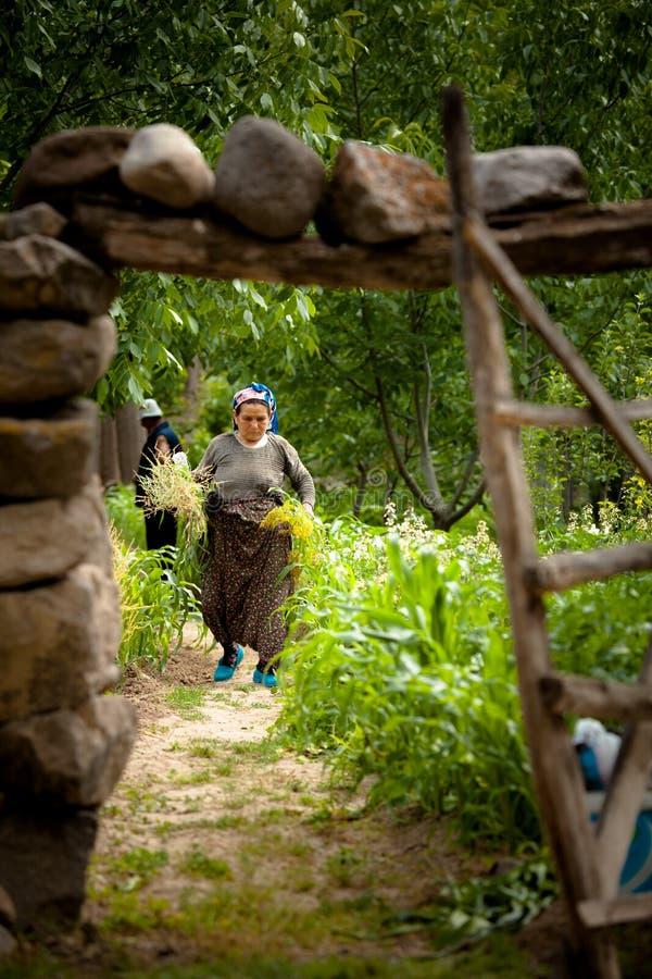 Turkiskt kvinnalantbruk arkivfoto