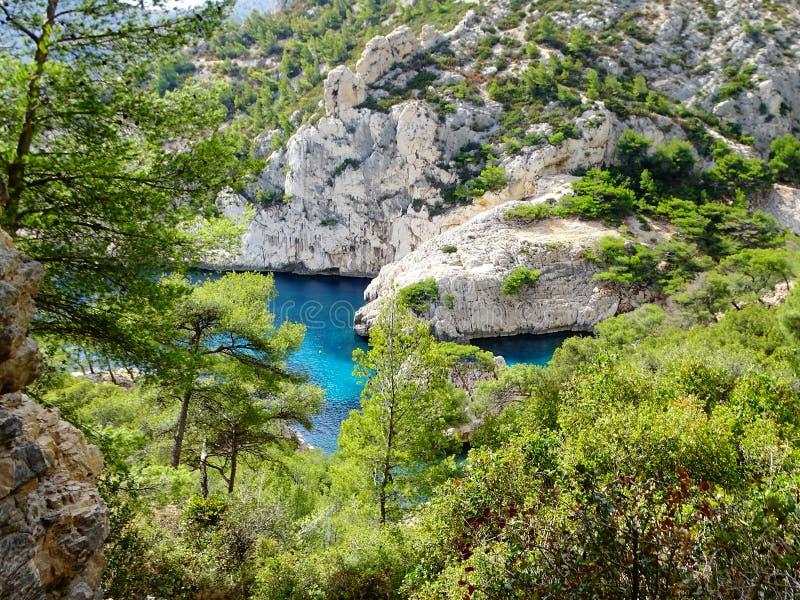 Turkoois blauw water onder pijnboombomen en witte rotsen royalty-vrije stock afbeeldingen