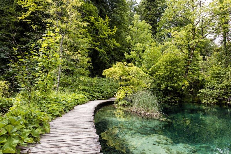 Turkoois gekleurd meer met houten pijler in Plitvice-Meren Nationaal Park stock fotografie