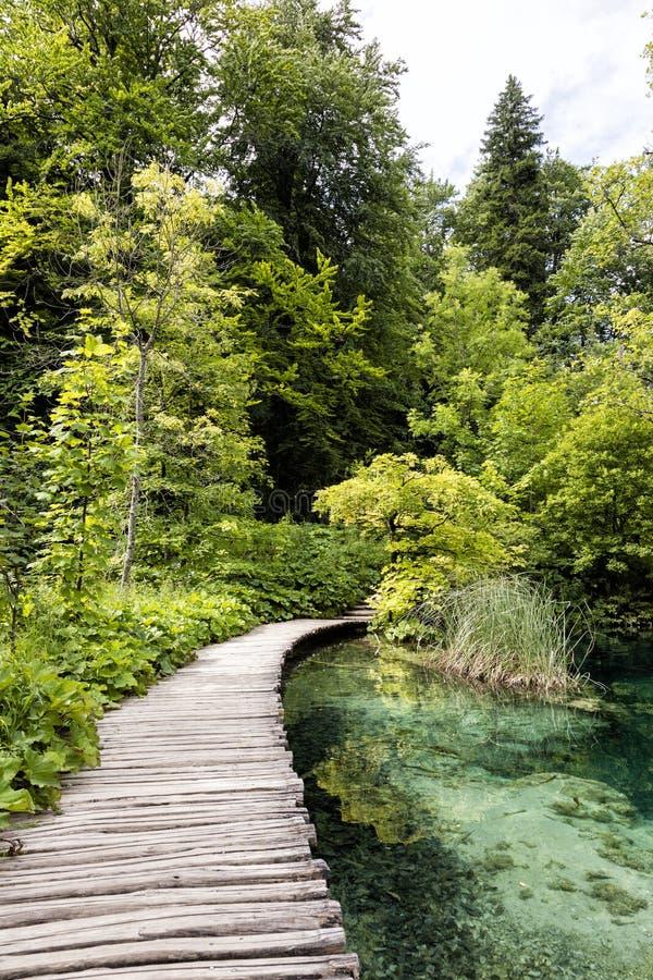 Turkoois gekleurd meer met houten pijler in Plitvice-Meren Nationaal Park royalty-vrije stock foto's