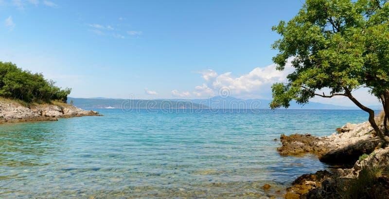 turkooise overzees en boom Kroatië stock afbeelding