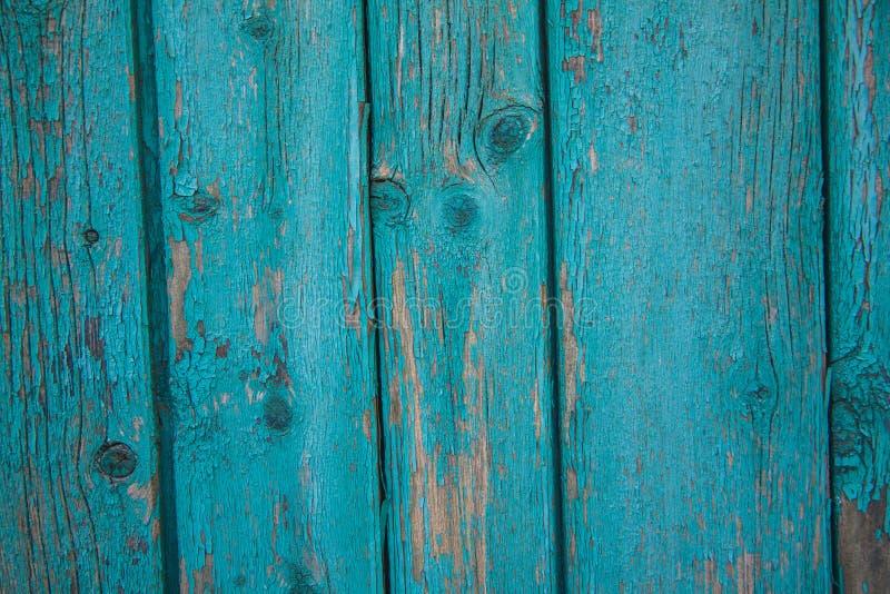 Turkosbräde med skalningsmålarfärg arkivfoton