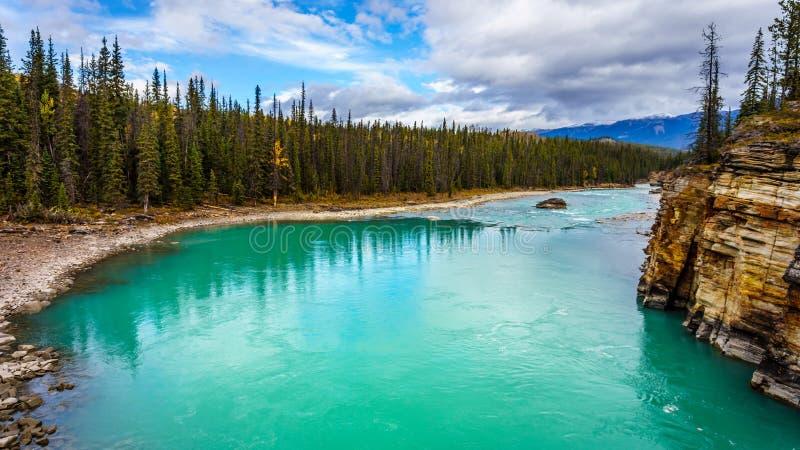 Turkosen färgade vatten av den Athabasca floden royaltyfri bild