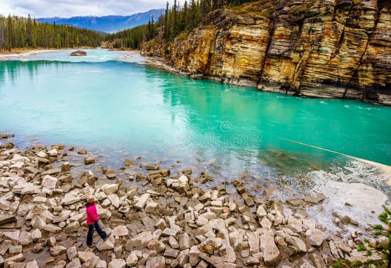 Turkosen färgade vatten av den Athabasca floden royaltyfri foto
