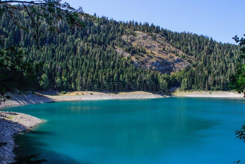 Turkosvatten av sj?n, pinjeskogen och bergen Bed?va bakgrund med naturen fotografering för bildbyråer