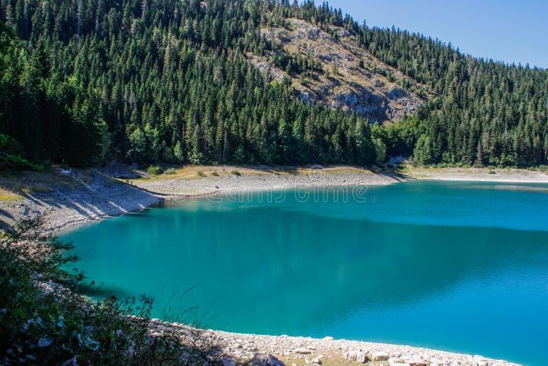 Turkosvatten av sj?n, pinjeskogen och bergen Bed?va bakgrund med naturen arkivbilder