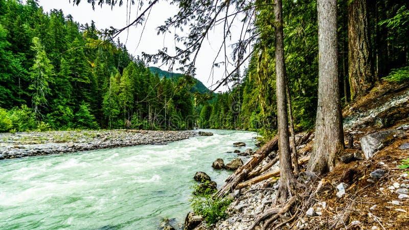 Turkosvattnet av den Lillooet floden royaltyfria bilder