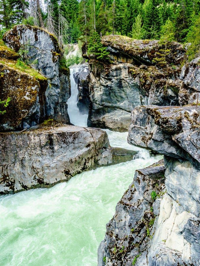 Turkosvattnet av den Lillooet floden som applåderar ner Nairn, faller arkivbilder