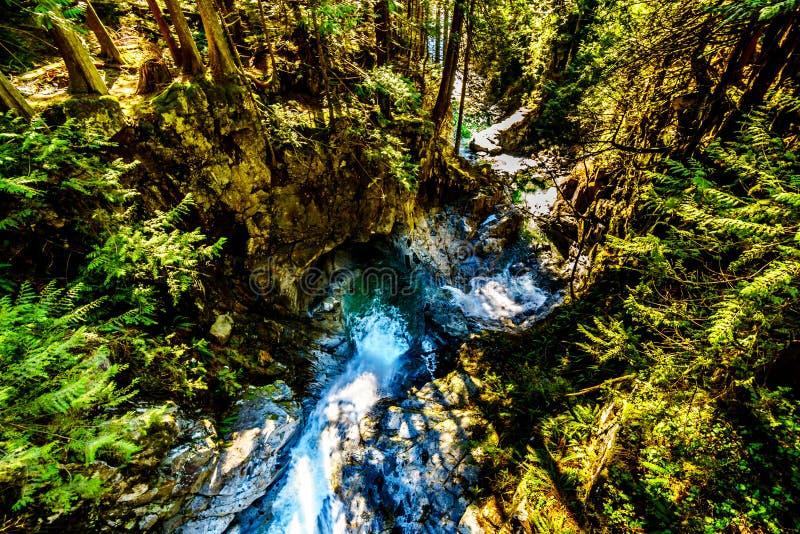 Turkosvattnet av kaskadnedg?ngar i Fraser Valley av British Columbia, Kanada royaltyfri foto