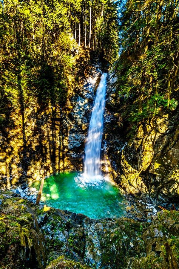 Turkosvattnet av kaskadnedg?ngar i Fraser Valley av British Columbia, Kanada royaltyfria bilder