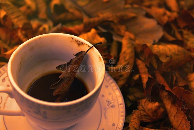 Turkse koffie in aard en dageraad royalty-vrije stock afbeeldingen