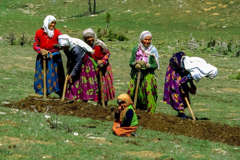 Turkse mensen bij landworkplatteland van Turkije stock foto