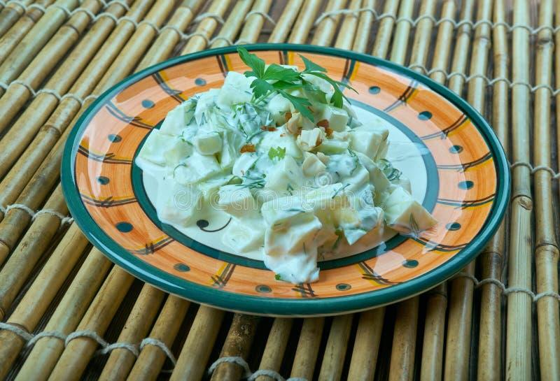 Turkse salade met courgette en yoghurt royalty-vrije stock foto