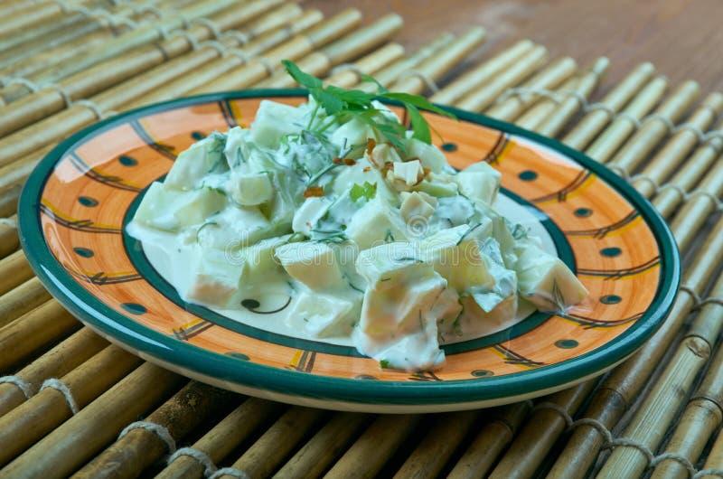 Turkse salade met courgette en yoghurt royalty-vrije stock afbeelding