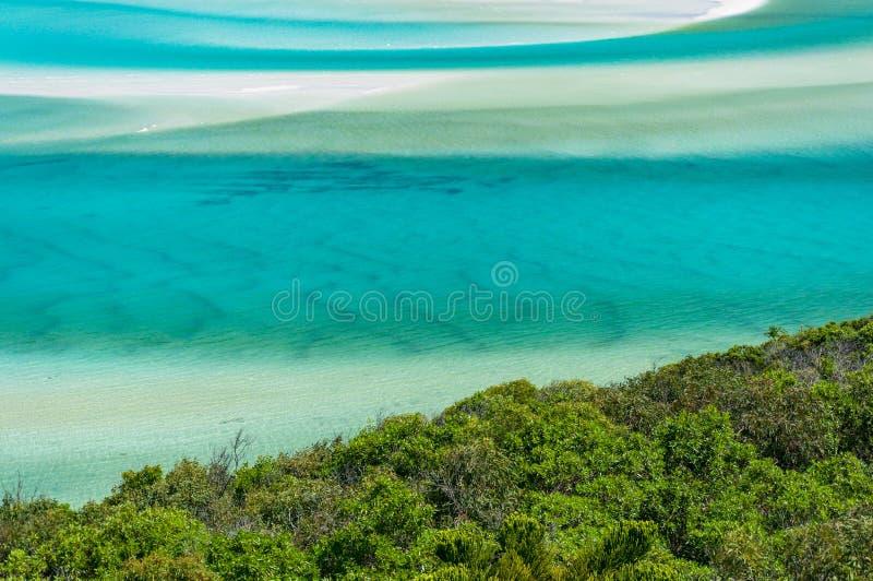 Turkusowa błękitne wody i zielony tropikalnych rośliien lata tło obrazy royalty free